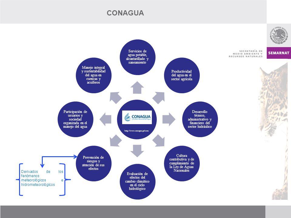 http://www.conagua.gob.mx Servicios de agua potable, alcantarillado y saneamiento Productividad del agua en el sector agrícola Desarrollo técnico, adm