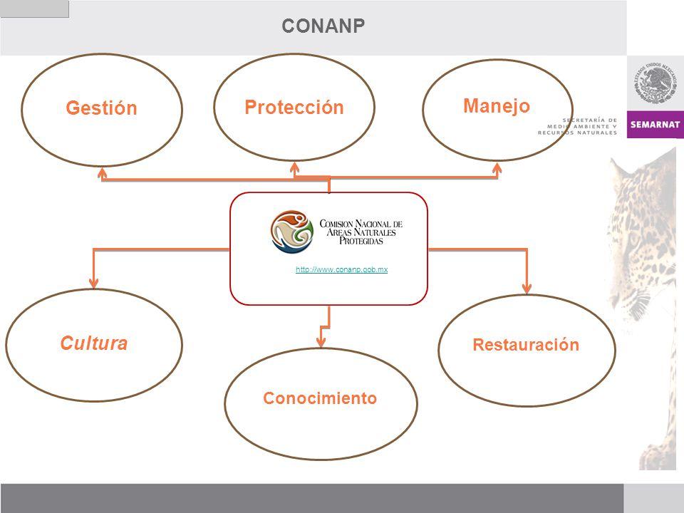 CONANP http://www.conanp.gob.mx Protección Manejo Restauración Cultura Conocimiento Gestión