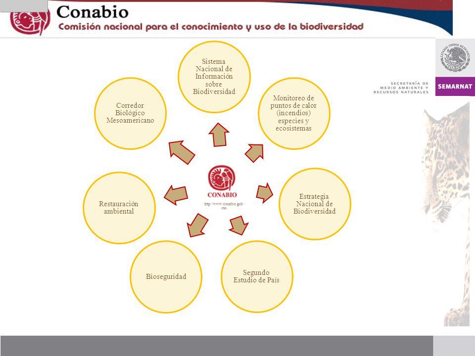 http://www.conabio.gob. mx Sistema Nacional de Información sobre Biodiversidad Monitoreo de puntos de calor (incendios) especies y ecosistemas Estrate