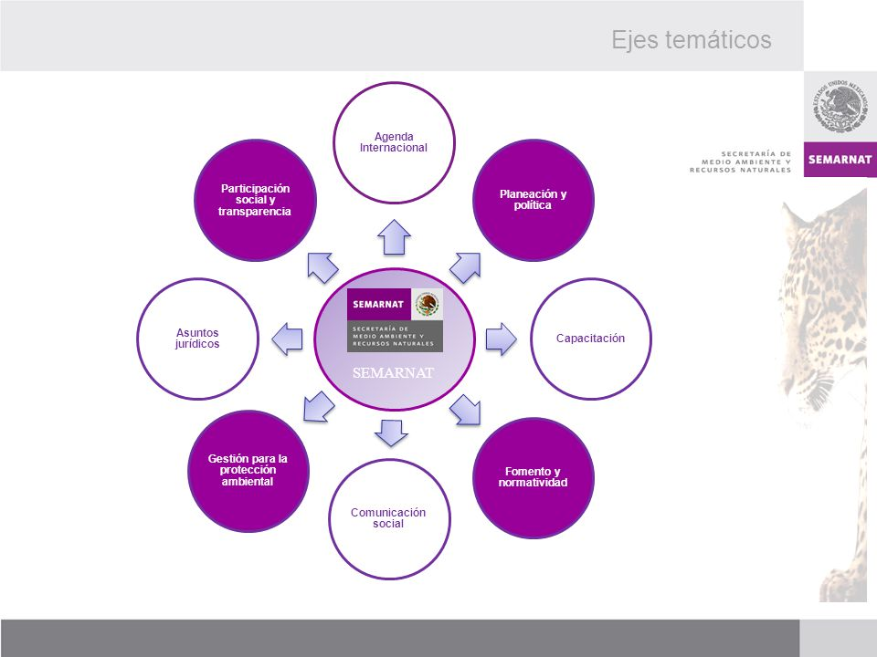 SEMARNAT Agenda Internacional Planeación y política Capacitación Fomento y normatividad Gestión para la protección ambiental Comunicación social Asunt