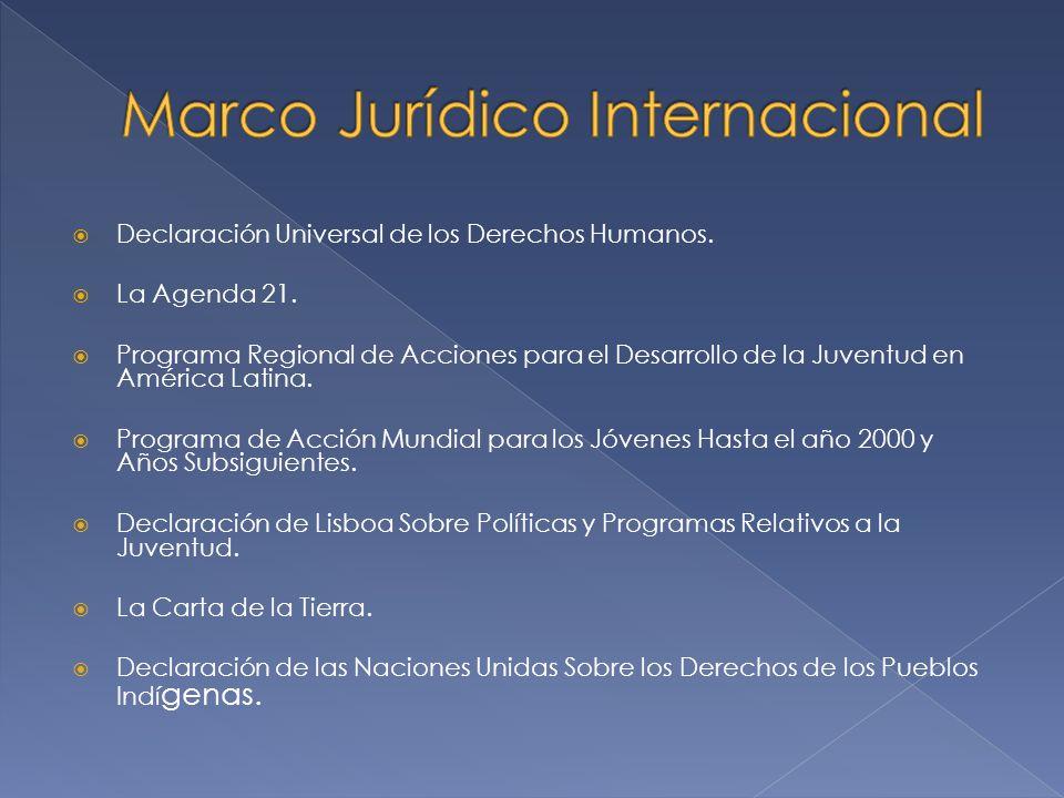 Declaración Universal de los Derechos Humanos. La Agenda 21. Programa Regional de Acciones para el Desarrollo de la Juventud en América Latina. Progra