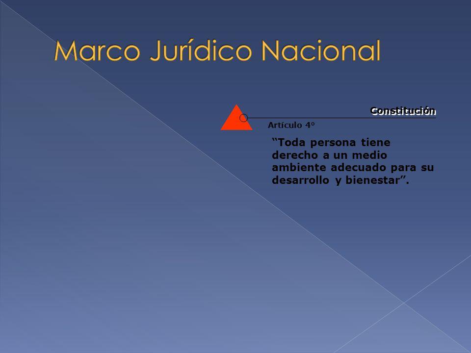 Artículo 1° y Artículo 4° Ley del Instituto Mexicano de la Juventud Constitución