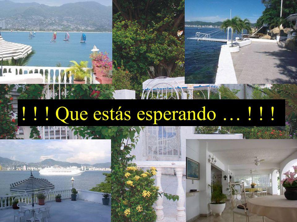 ….. Disfruta Acapulco ! ! ! !
