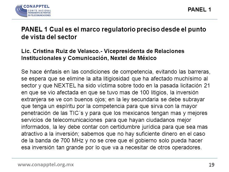 PANEL 1 Cual es el marco regulatorio preciso desde el punto de vista del sector Lic. Cristina Ruiz de Velasco.- Vicepresidenta de Relaciones Instituci