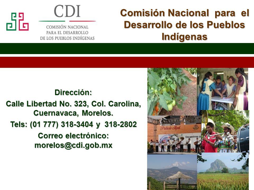 Morelos 2013 Comisión Nacional para el Desarrollo de los Pueblos Indígenas Dirección: Calle Libertad No. 323, Col. Carolina, Cuernavaca, Morelos. Tels