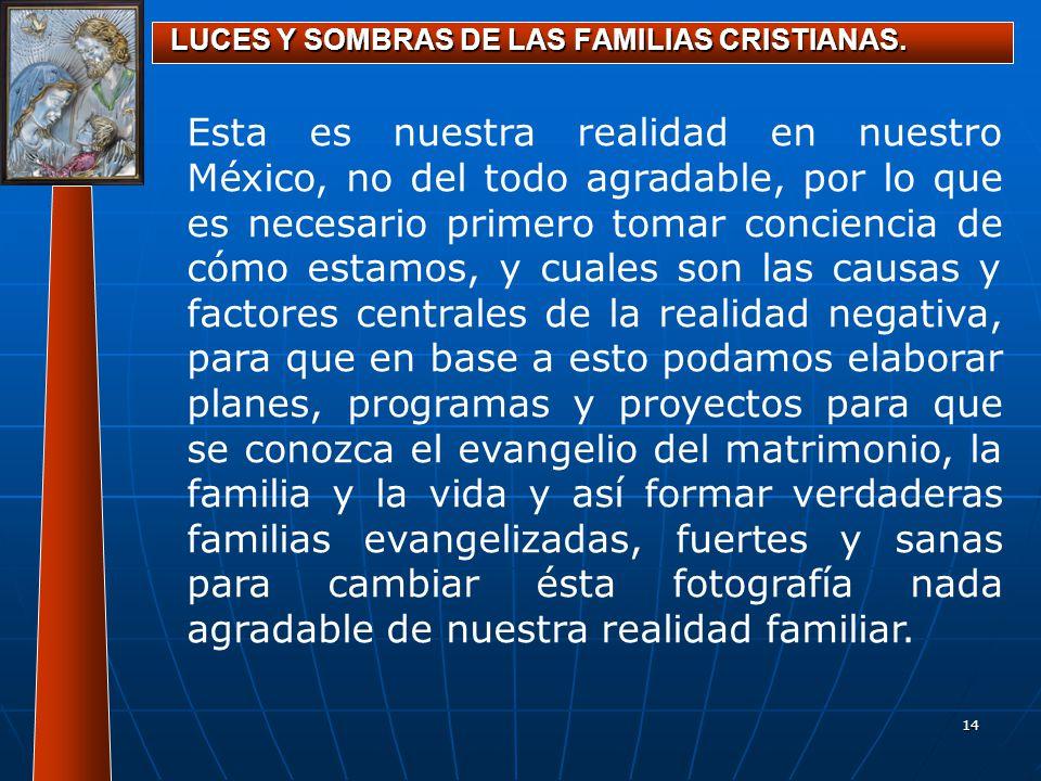 14 LUCES Y SOMBRAS DE LAS FAMILIAS CRISTIANAS. Esta es nuestra realidad en nuestro México, no del todo agradable, por lo que es necesario primero toma