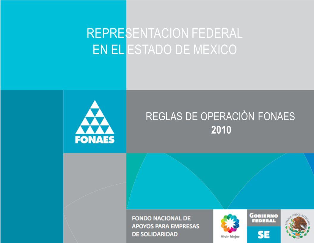 REGLAS DE OPERACIÒN FONAES 2010 REPRESENTACION FEDERAL EN EL ESTADO DE MEXICO