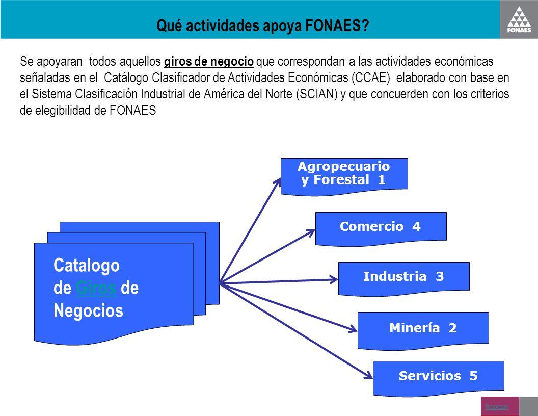 Qué actividades apoya FONAES? Se apoyaran todos aquellos giros de negocio que correspondan a las actividades económicas señaladas en el Catálogo Clasi