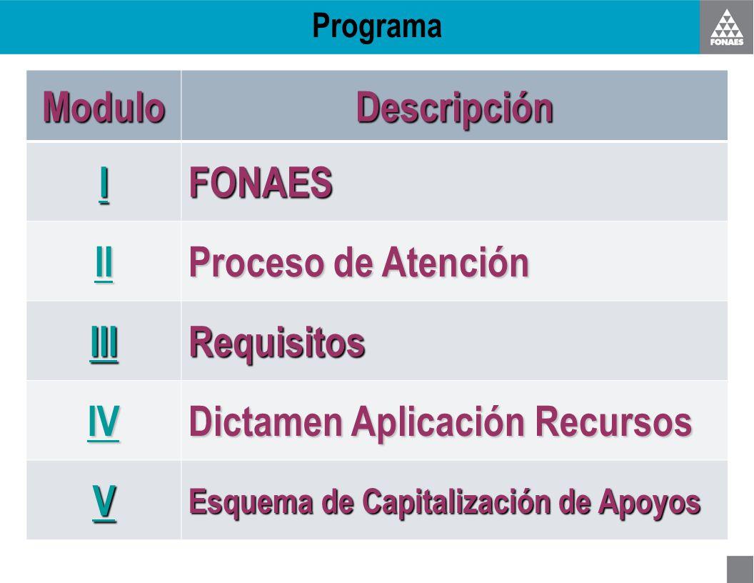 ProgramaModuloDescripción IIII FONAES II Proceso de Atención III Requisitos IV Dictamen Aplicación Recursos VVVV Esquema de Capitalización de Apoyos