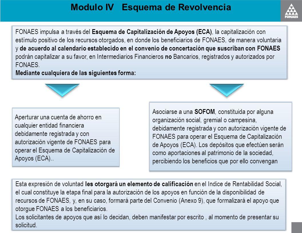 Modulo IV Esquema de Revolvencia FONAES impulsa a través del Esquema de Capitalización de Apoyos (ECA), la capitalización con estímulo positivo de los