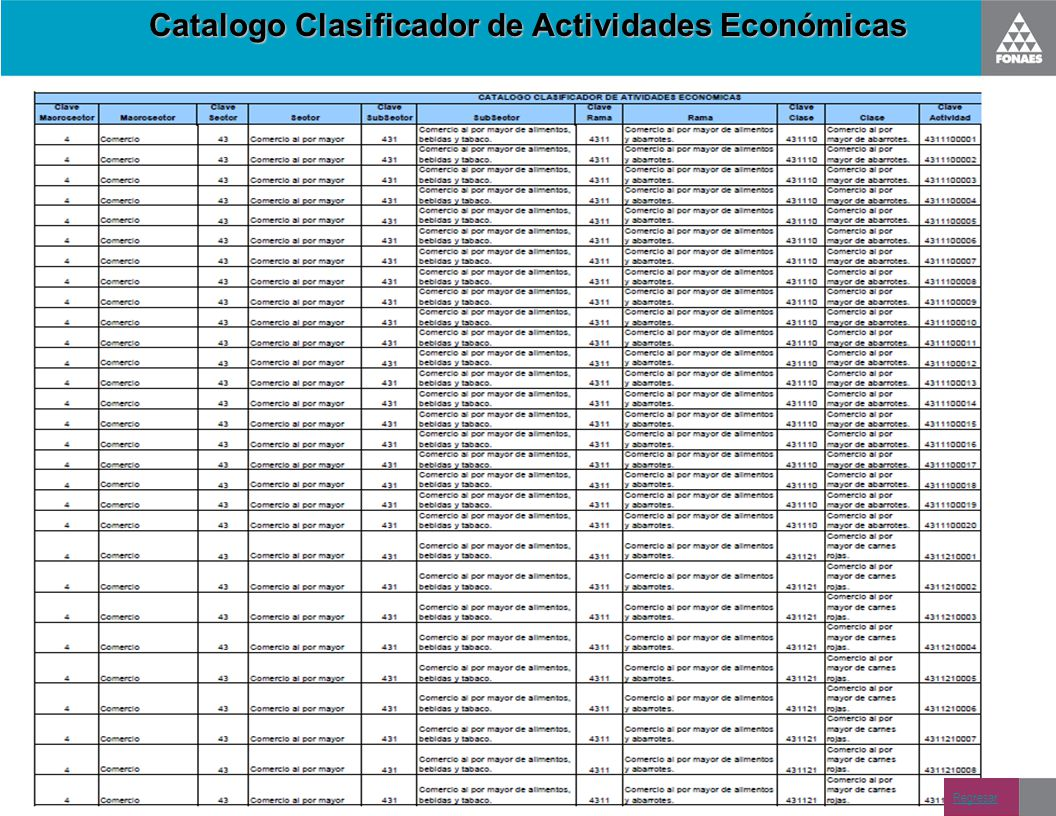 Catalogo Clasificador de Actividades Económicas Regresar
