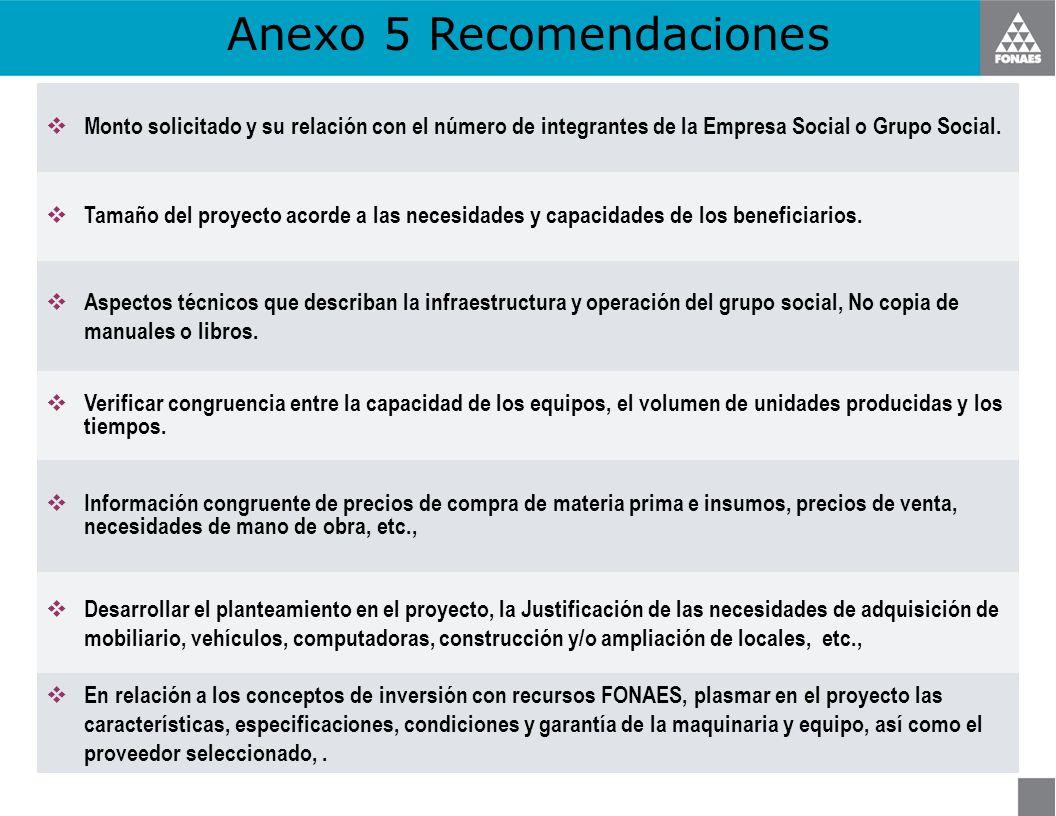 Anexo 5 Recomendaciones Monto solicitado y su relación con el número de integrantes de la Empresa Social o Grupo Social. Tamaño del proyecto acorde a