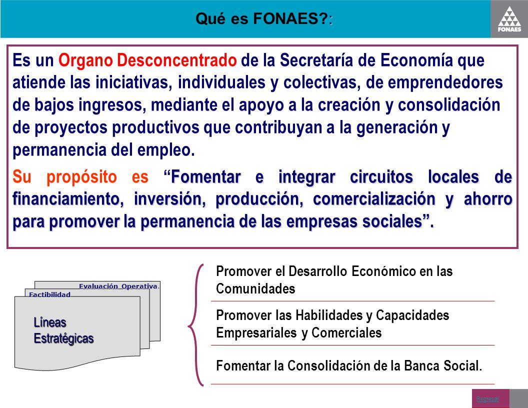 : Qué es FONAES?: Es un Organo Desconcentrado de la Secretaría de Economía que atiende las iniciativas, individuales y colectivas, de emprendedores de
