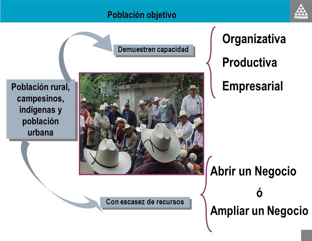 Población objetivo Población rural, campesinos, indígenas y población urbana Demuestren capacidad Con escasez de recursos Organizativa Productiva Empr