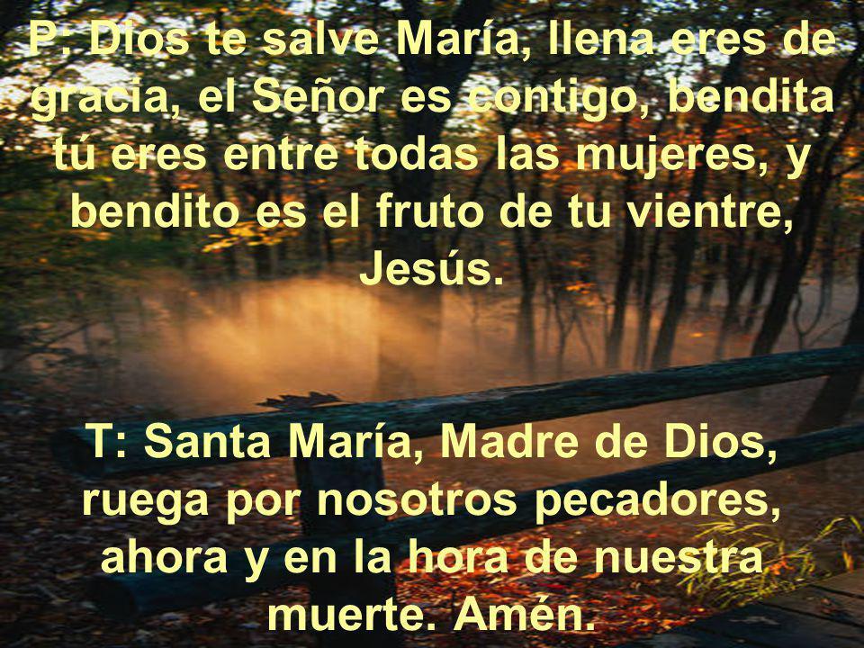 P: Dios te salve María, llena eres de gracia, el Señor es contigo, bendita tú eres entre todas las mujeres, y bendito es el fruto de tu vientre, Jesús.