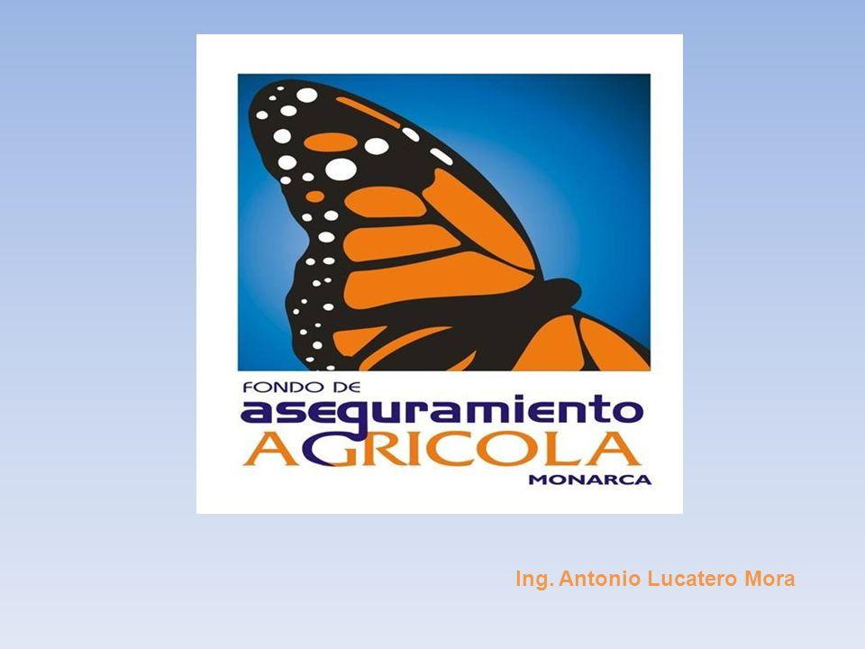 Ing. Antonio Lucatero Mora