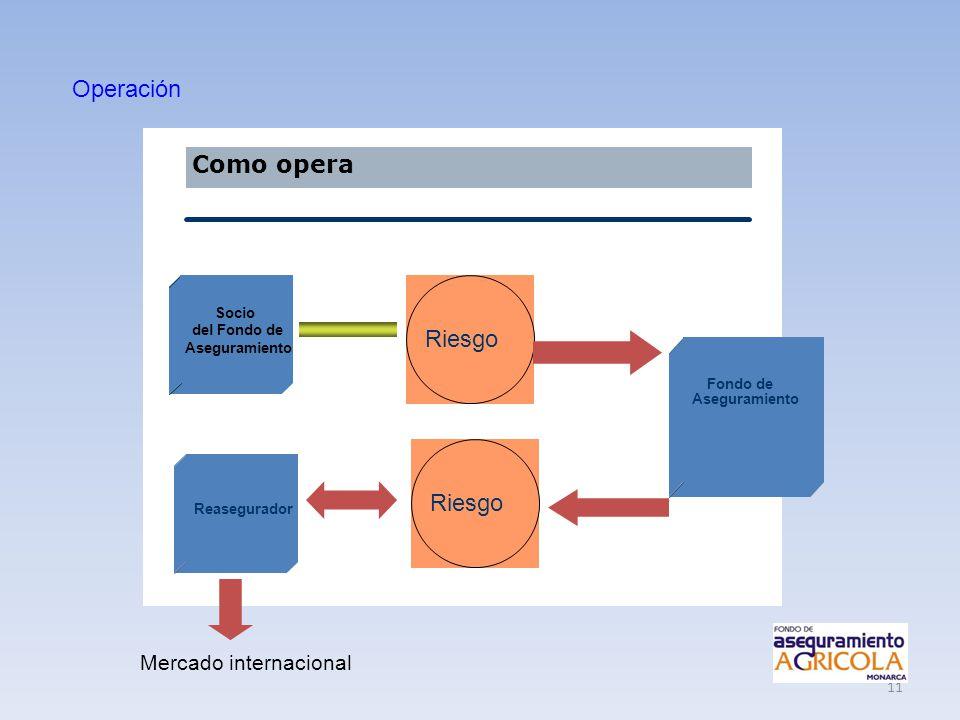 11 Como opera Socio del Fondo de Aseguramiento Fondo de Aseguramiento Reasegurador Riesgo Operación Mercado internacional