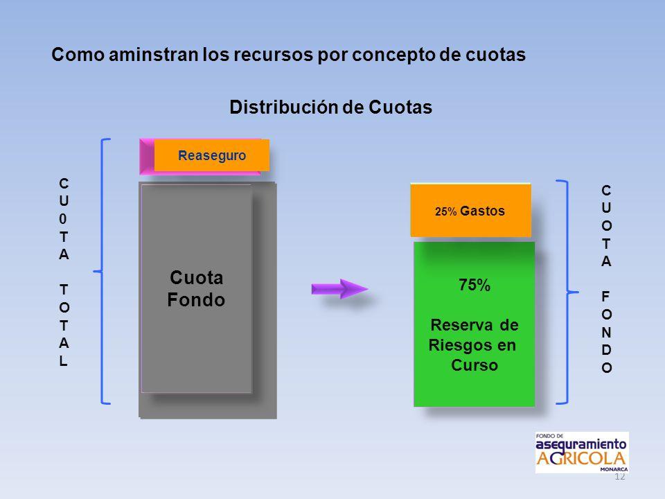 12 Como aminstran los recursos por concepto de cuotas Distribución de Cuotas Cuota Fondo Cuota Fondo 75% Reserva de Riesgos en Curso 25% Gastos Reaseg