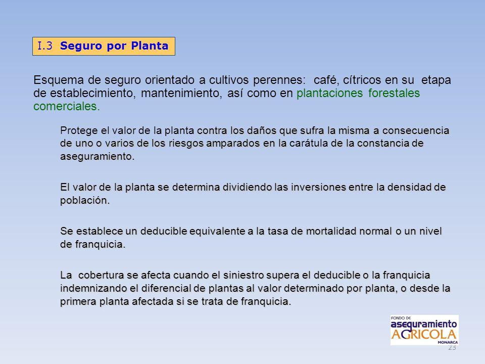 23 Esquema de seguro orientado a cultivos perennes: café, cítricos en su etapa de establecimiento, mantenimiento, así como en plantaciones forestales