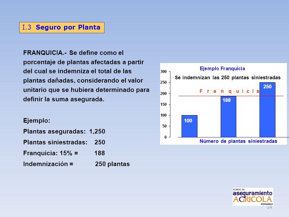 24 FRANQUICIA.- Se define como el porcentaje de plantas afectadas a partir del cual se indemniza el total de las plantas dañadas, considerando el valo