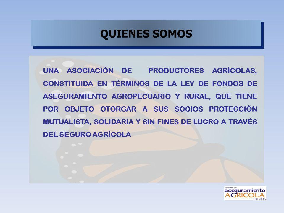 UNA ASOCIACIÒN DE PRODUCTORES AGRÍCOLAS, CONSTITUIDA EN TÈRMINOS DE LA LEY DE FONDOS DE ASEGURAMIENTO AGROPECUARIO Y RURAL, QUE TIENE POR OBJETO OTORG