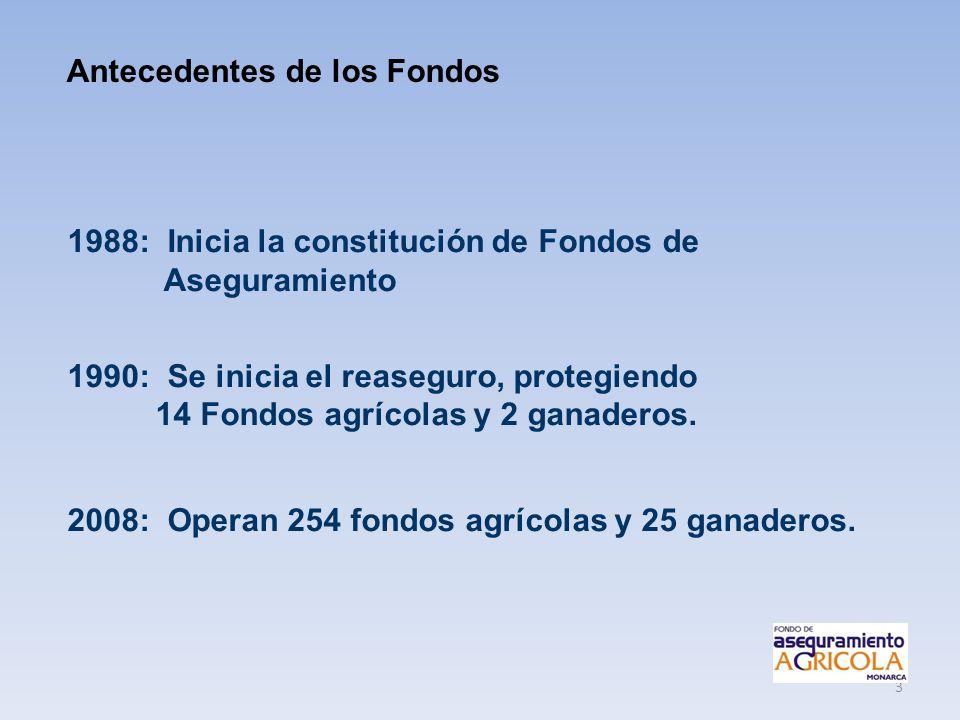 3 1988: Inicia la constitución de Fondos de Aseguramiento 1990: Se inicia el reaseguro, protegiendo 14 Fondos agrícolas y 2 ganaderos. 2008: Operan 25