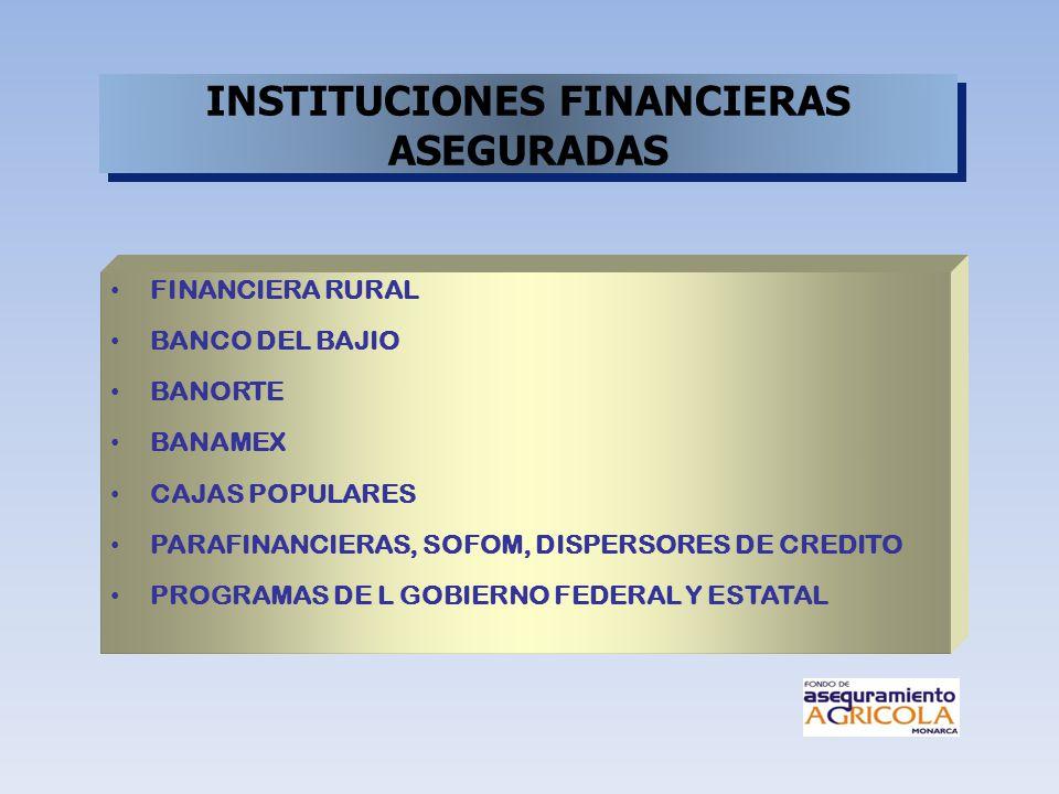 FINANCIERA RURAL BANCO DEL BAJIO BANORTE BANAMEX CAJAS POPULARES PARAFINANCIERAS, SOFOM, DISPERSORES DE CREDITO PROGRAMAS DE L GOBIERNO FEDERAL Y ESTA
