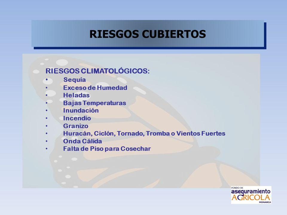 RIESGOS CUBIERTOS RIESGOS CLIMATOLÓGICOS: Sequía Exceso de Humedad Heladas Bajas Temperaturas Inundación Incendio Granizo Huracán, Ciclón, Tornado, Tr