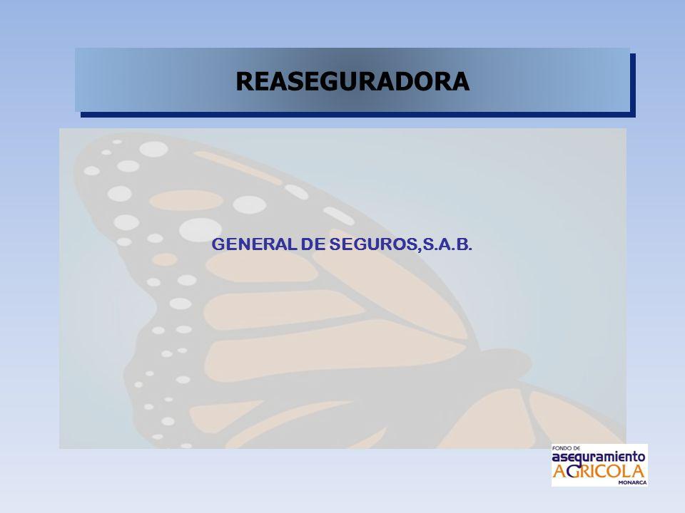 REASEGURADORA GENERAL DE SEGUROS,S.A.B.