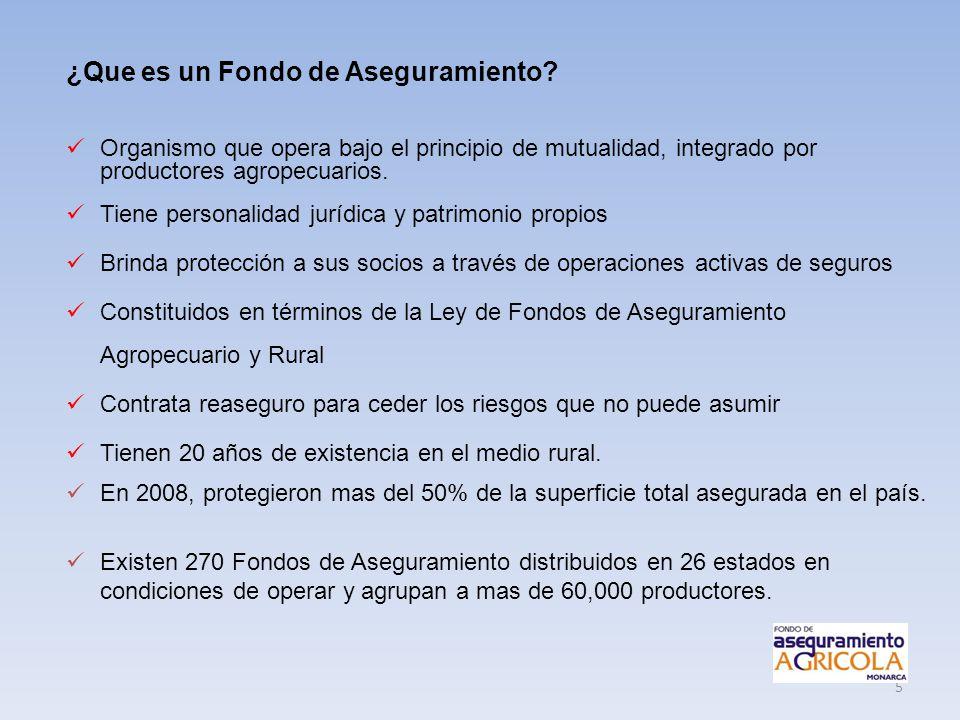 5 ¿Que es un Fondo de Aseguramiento? Organismo que opera bajo el principio de mutualidad, integrado por productores agropecuarios. Tiene personalidad