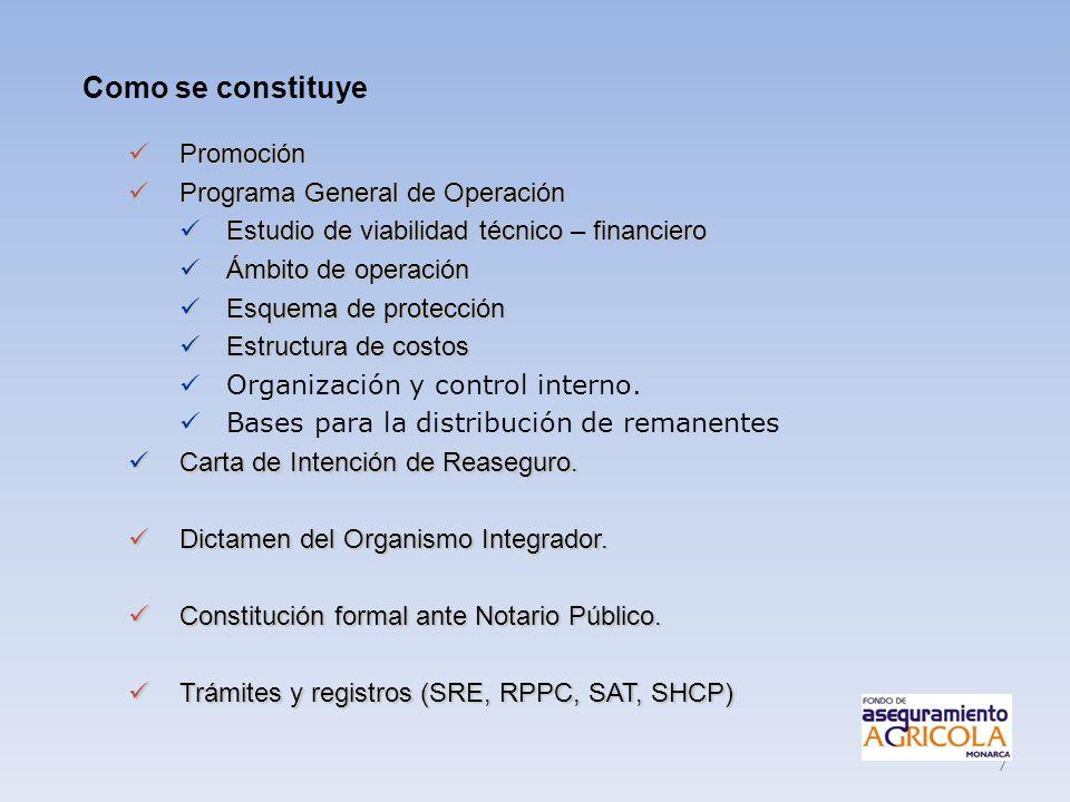 7 Promoción Promoción Programa General de Operación Programa General de Operación Estudio de viabilidad técnico – financiero Estudio de viabilidad téc