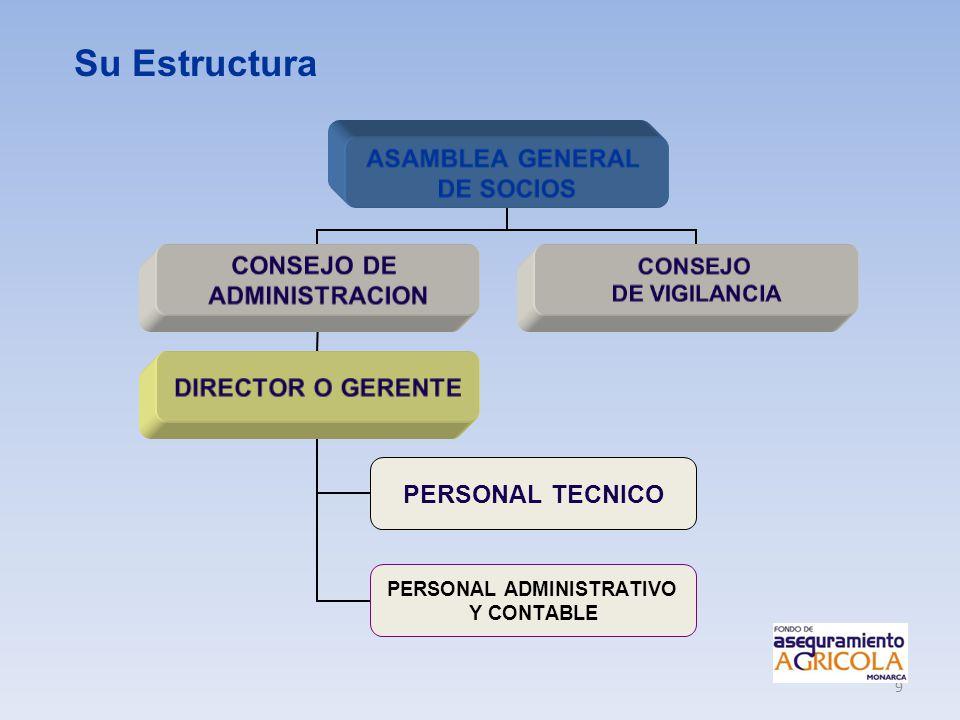9 ASAMBLEA GENERAL DE SOCIOS CONSEJO DE ADMINISTRACION DIRECTOR O GERENTE PERSONAL TECNICO PERSONAL ADMINISTRATIVO Y CONTABLE CONSEJO DE VIGILANCIA Su