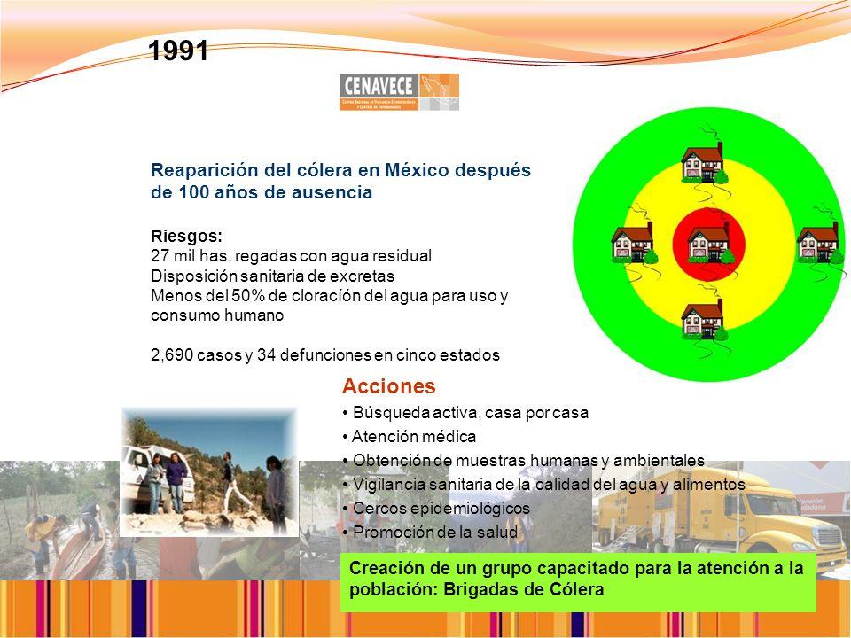 Reaparición del cólera en México después de 100 años de ausencia Riesgos: 27 mil has.