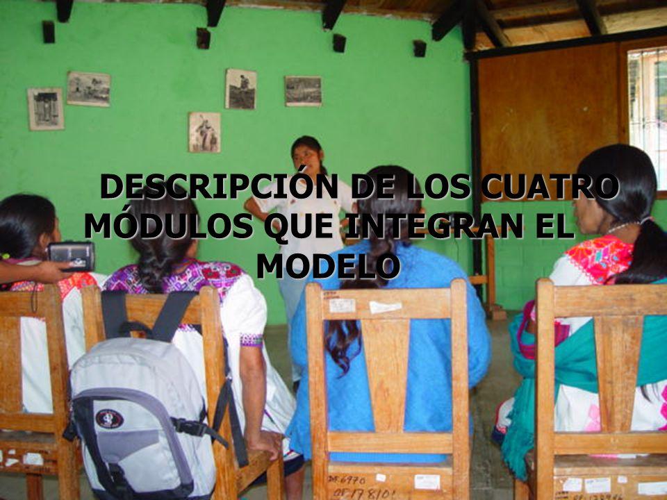 DESCRIPCIÓN DE LOS CUATRO DESCRIPCIÓN DE LOS CUATRO MÓDULOS QUE INTEGRAN EL MODELO