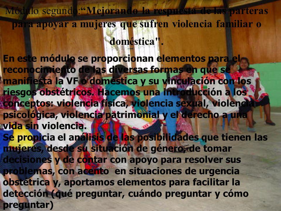 Módulo segundo:Mejorando la respuesta de las parteras para apoyar a mujeres que sufren violencia familiar o doméstica .