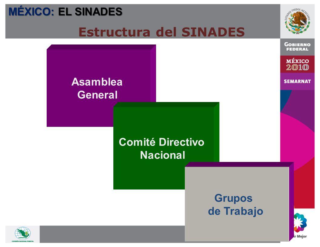 Comité Directivo del SINADES PRESIDENTE C.