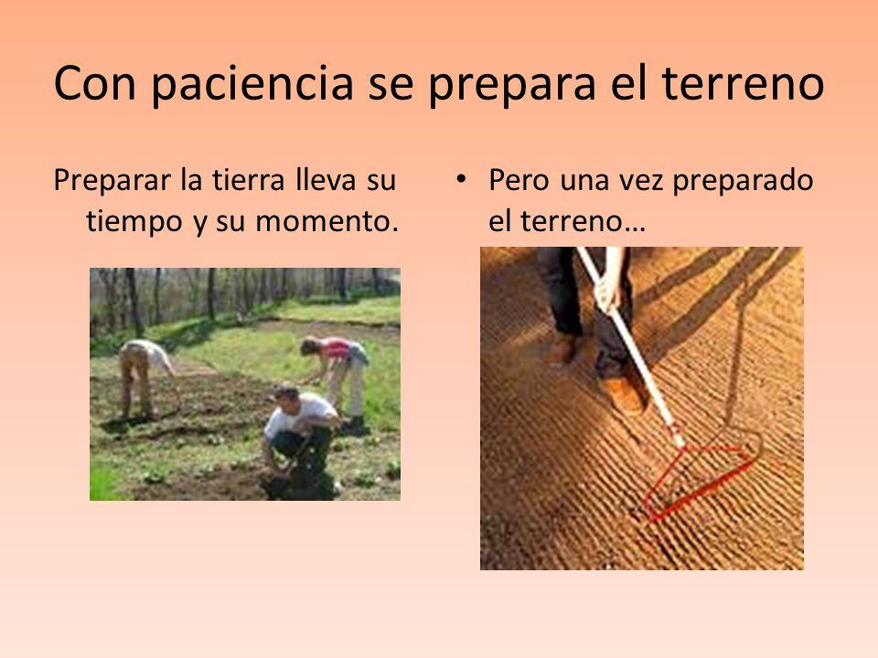 Con paciencia se prepara el terreno Preparar la tierra lleva su tiempo y su momento. Pero una vez preparado el terreno…