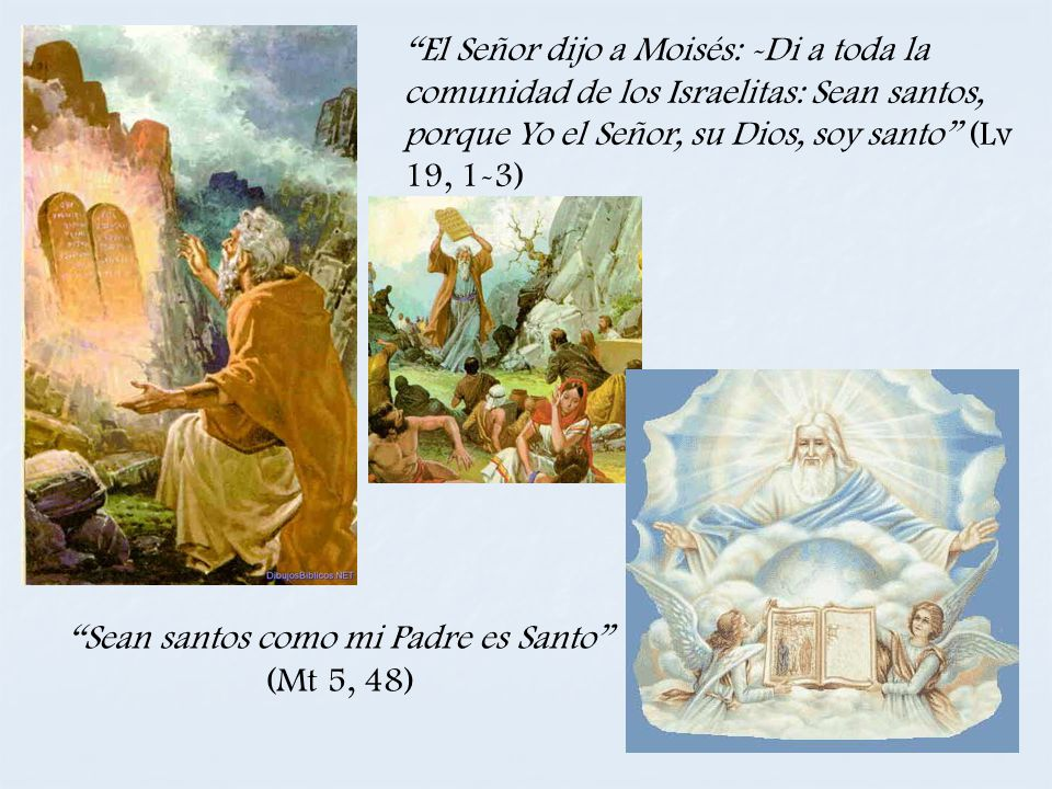 El Señor dijo a Moisés: -Di a toda la comunidad de los Israelitas: Sean santos, porque Yo el Señor, su Dios, soy santo (Lv 19, 1-3) Sean santos como m