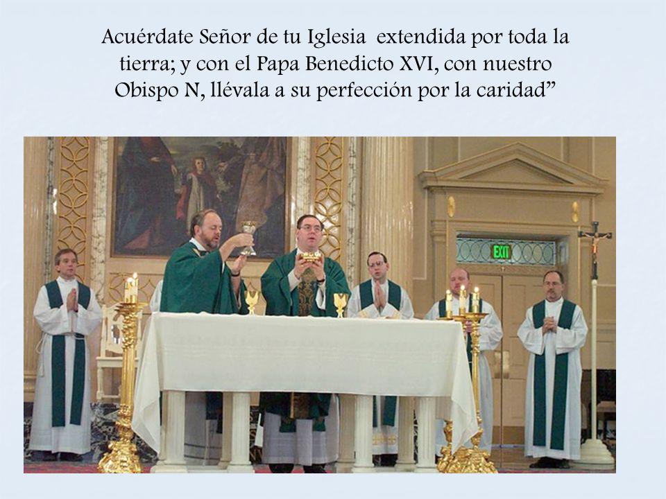 Acuérdate Señor de tu Iglesia extendida por toda la tierra; y con el Papa Benedicto XVI, con nuestro Obispo N, llévala a su perfección por la caridad