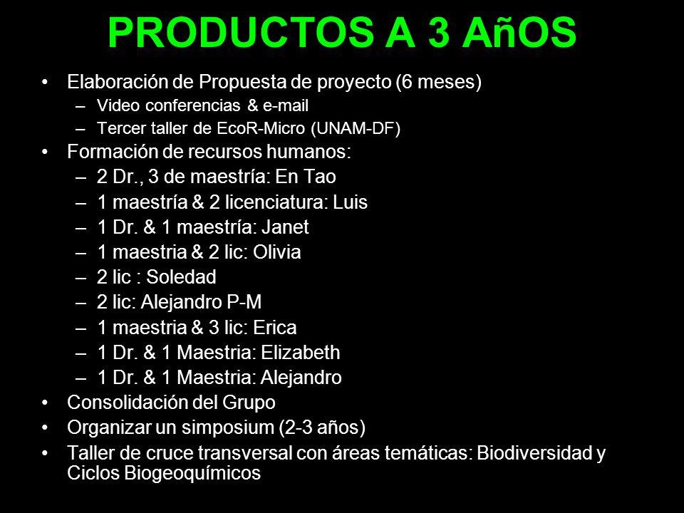 PRODUCTOS A 3 AñOS Elaboración de Propuesta de proyecto (6 meses) –Video conferencias & e-mail –Tercer taller de EcoR-Micro (UNAM-DF) Formación de rec