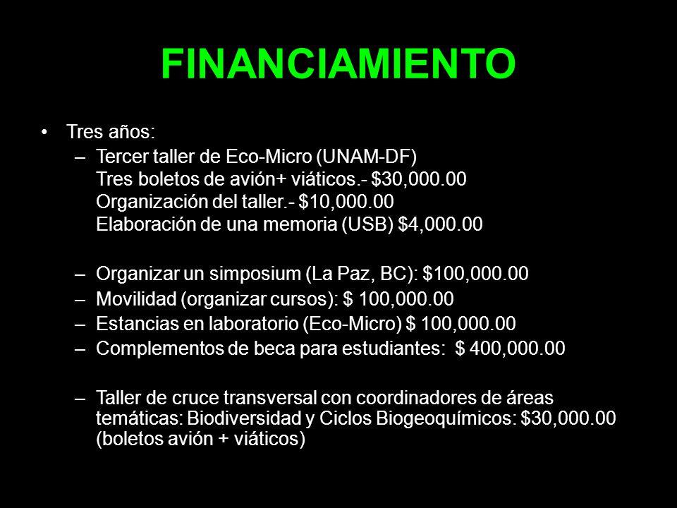 FINANCIAMIENTO Tres años: –Tercer taller de Eco-Micro (UNAM-DF) Tres boletos de avión+ viáticos.- $30,000.00 Organización del taller.- $10,000.00 Elab