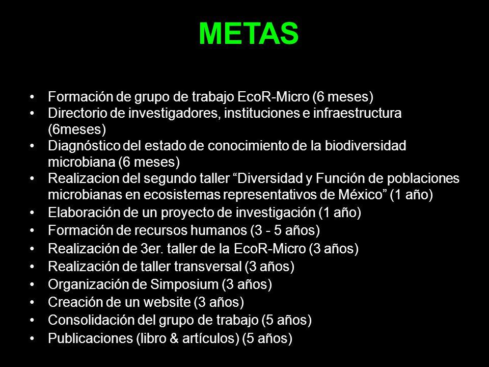 METAS Formación de grupo de trabajo EcoR-Micro (6 meses) Directorio de investigadores, instituciones e infraestructura (6meses) Diagnóstico del estado