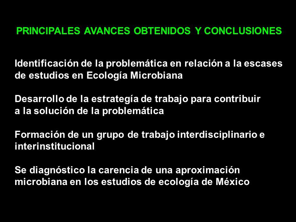 PRINCIPALES AVANCES OBTENIDOS Y CONCLUSIONES Identificación de la problemática en relación a la escases de estudios en Ecología Microbiana Desarrollo