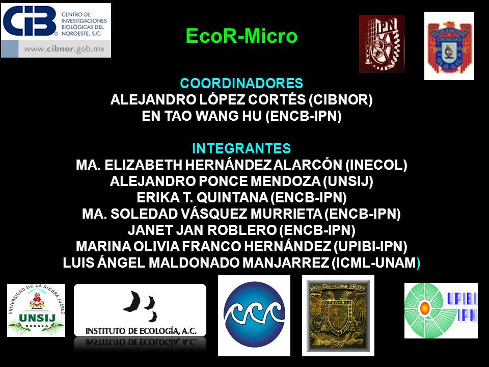 EcoR-Micro COORDINADORES ALEJANDRO LÓPEZ CORTÉS (CIBNOR) EN TAO WANG HU (ENCB-IPN) INTEGRANTES MA. ELIZABETH HERNÁNDEZ ALARCÓN (INECOL) ALEJANDRO PONC