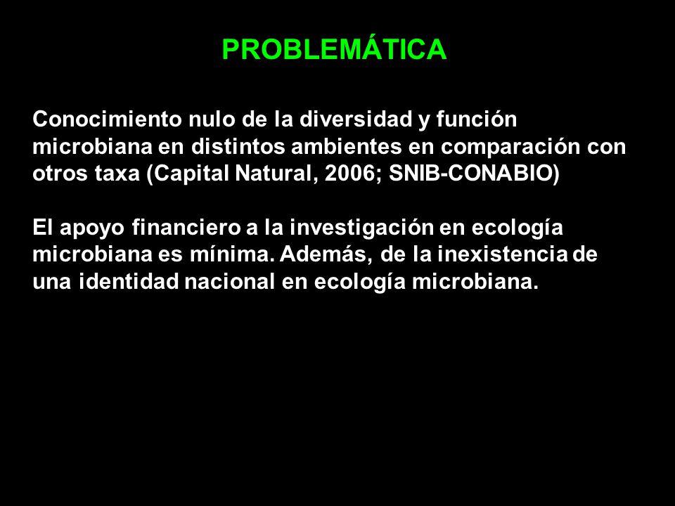 PROBLEMÁTICA Conocimiento nulo de la diversidad y función microbiana en distintos ambientes en comparación con otros taxa (Capital Natural, 2006; SNIB