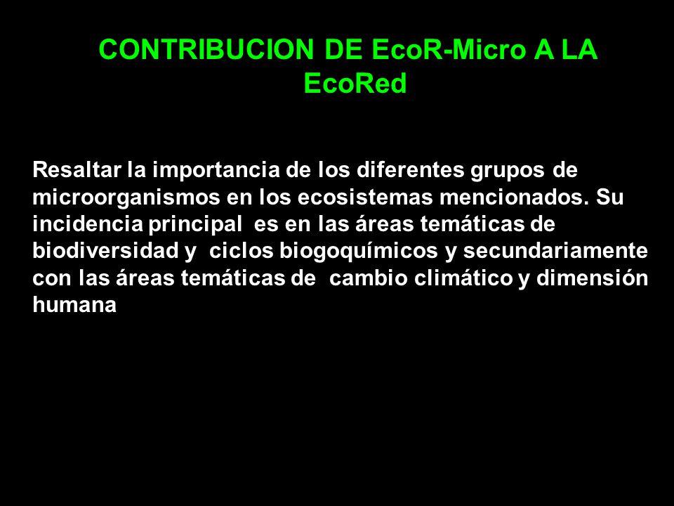 CONTRIBUCION DE EcoR-Micro A LA EcoRed Resaltar la importancia de los diferentes grupos de microorganismos en los ecosistemas mencionados. Su incidenc