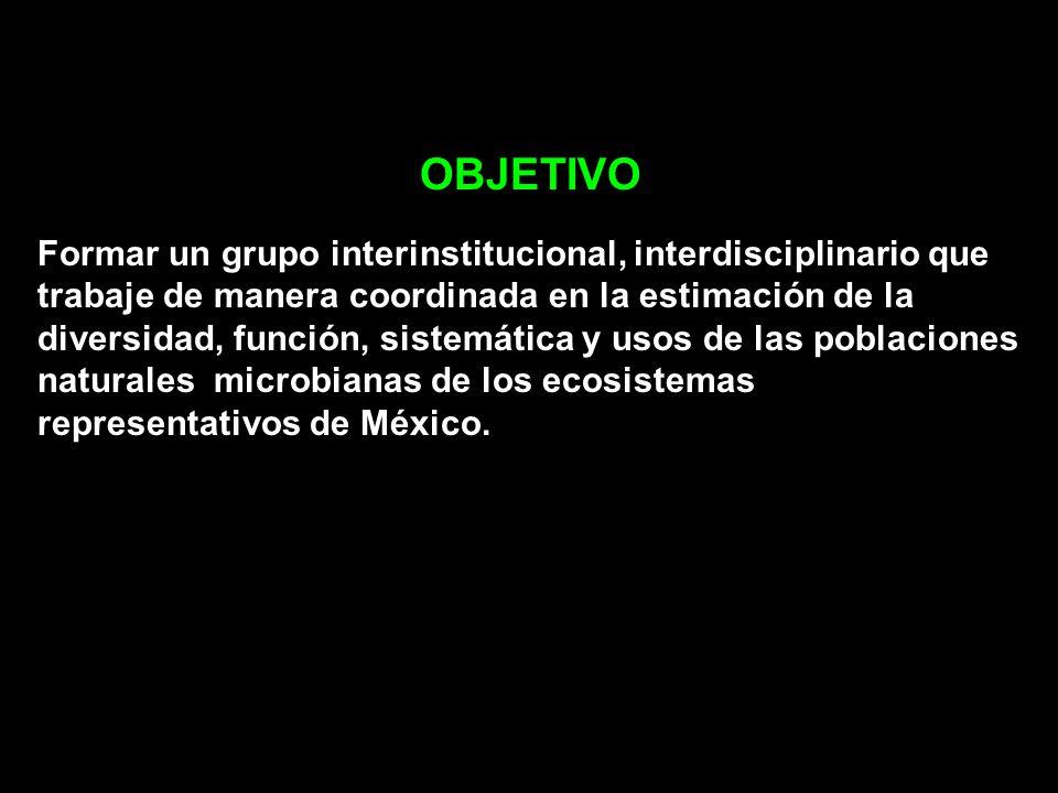 OBJETIVO Formar un grupo interinstitucional, interdisciplinario que trabaje de manera coordinada en la estimación de la diversidad, función, sistemáti