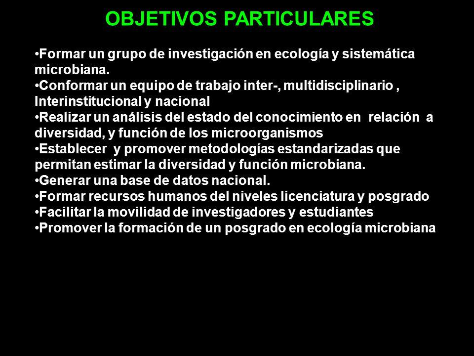 OBJETIVOS PARTICULARES Formar un grupo de investigación en ecología y sistemática microbiana. Conformar un equipo de trabajo inter-, multidisciplinari