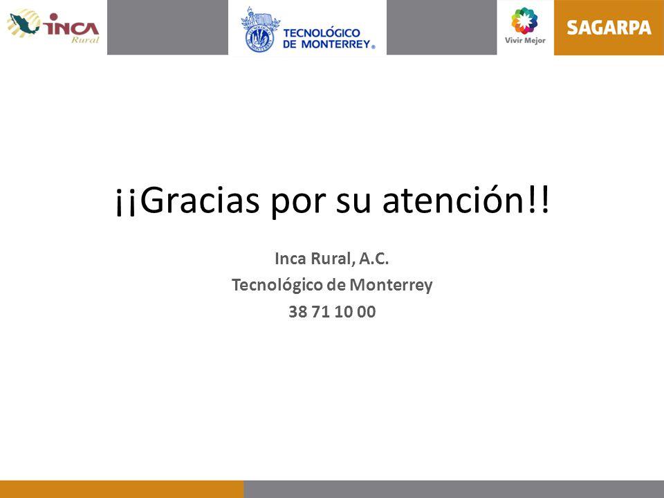 ¡¡Gracias por su atención!! Inca Rural, A.C. Tecnológico de Monterrey 38 71 10 00