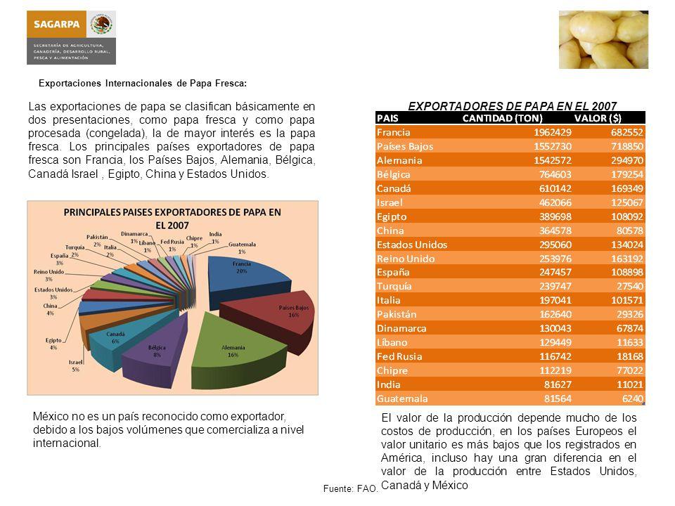 Exportaciones Internacionales de Papa Congelada: Las exportaciones de papa congelada se refieren a la papa procesada, normalmente es conocida como papas a la francesa.
